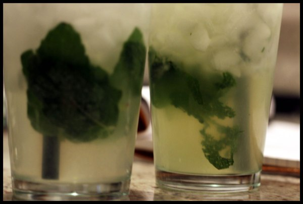 [mojito] over muddled mint